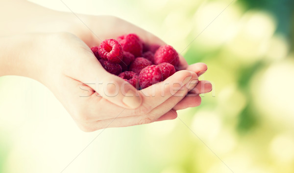 close up of woman hands holding raspberries Stock photo © dolgachov