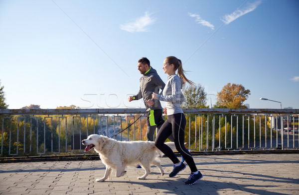 happy couple with dog running outdoors Stock photo © dolgachov