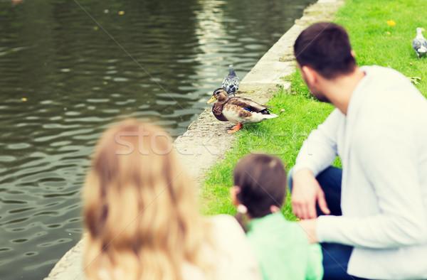 Család néz kacsa nyár tavacska park Stock fotó © dolgachov
