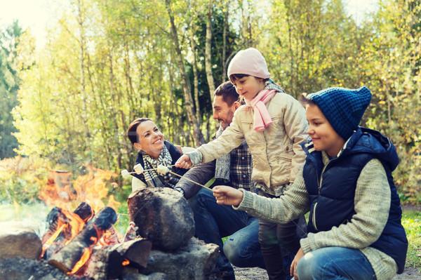幸せな家族 マシュマロ キャンプ 旅行 観光 ストックフォト © dolgachov