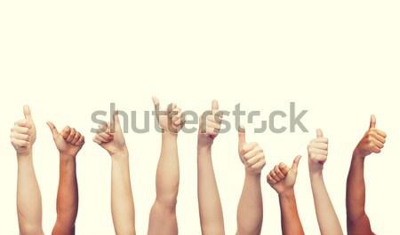 Umani mani gesto parti del corpo Foto d'archivio © dolgachov