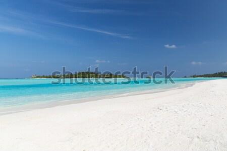 Maldivas isla playa palmera Villa viaje Foto stock © dolgachov