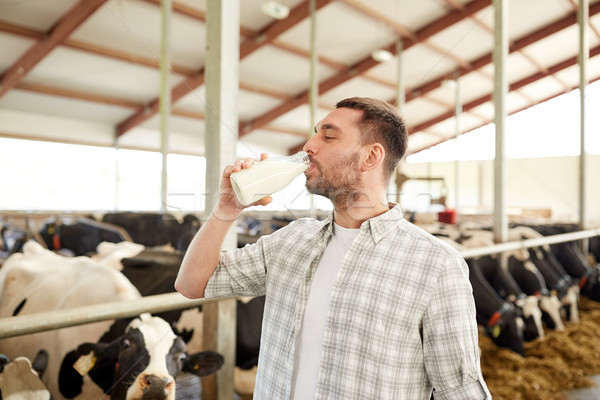 man or farmer drinking cows milk on dairy farm Stock photo © dolgachov