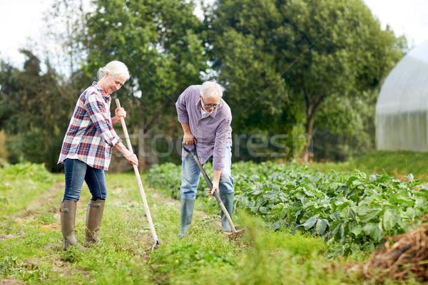 Personnes âgées agriculture