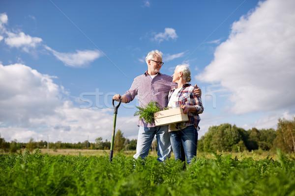 Couple de personnes âgées pelle carottes ferme Photo stock © dolgachov