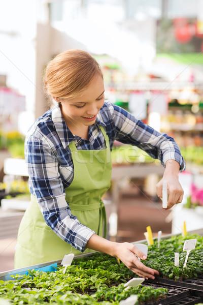 Kobieta sadzonka szklarnia ludzi ogrodnictwo zawód Zdjęcia stock © dolgachov