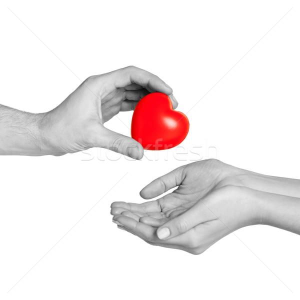 ストックフォト: 男 · 手 · 赤 · 中心 · 女性 · 愛
