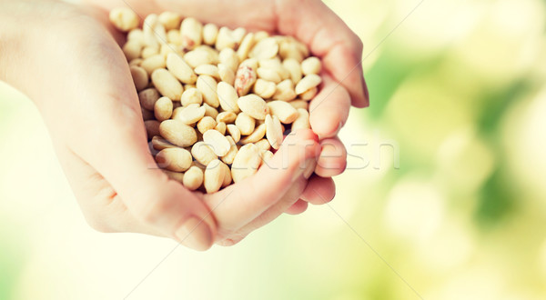 close up of woman hands holding peeled peanuts Stock photo © dolgachov