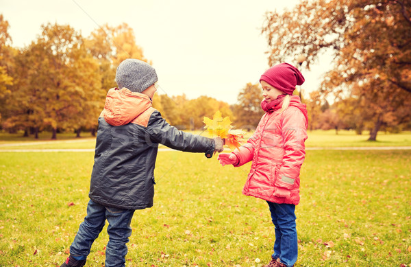 little boy giving autumn maple leaves to girl Stock photo © dolgachov