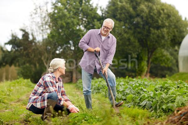 рабочих саду лет фермы Сток-фото © dolgachov