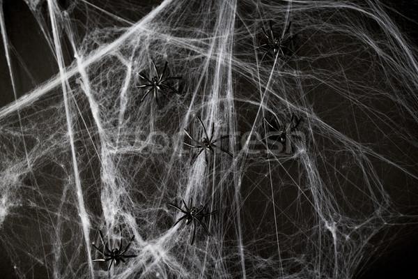 Halloween décoration noir jouet araignées web Photo stock © dolgachov