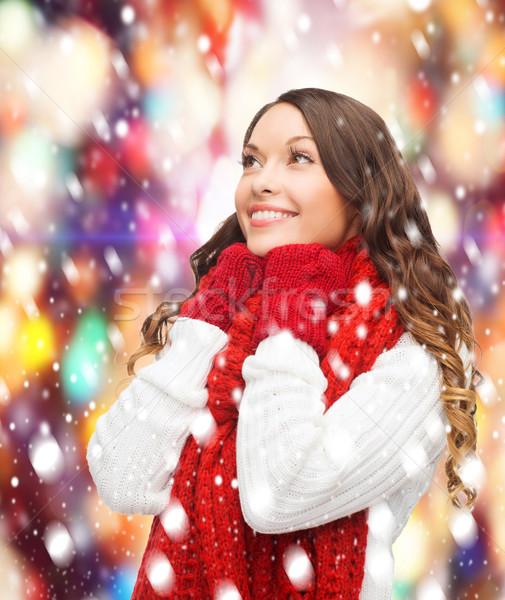 Nő pulóver sál ujjatlan kesztyűk tél emberek Stock fotó © dolgachov