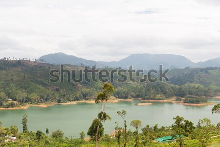 view to lake or river from land hills on Sri Lanka Stock photo © dolgachov