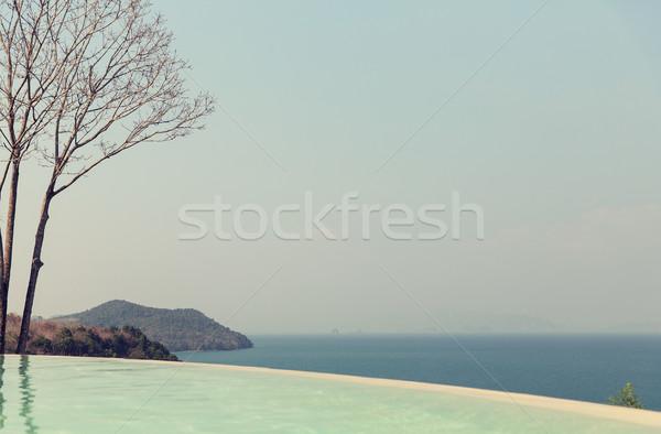Piękna widoku nieskończoność krawędź basen morza Zdjęcia stock © dolgachov