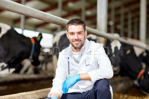 veterinarian and cows in cowshed on dairy farm Stock photo © dolgachov