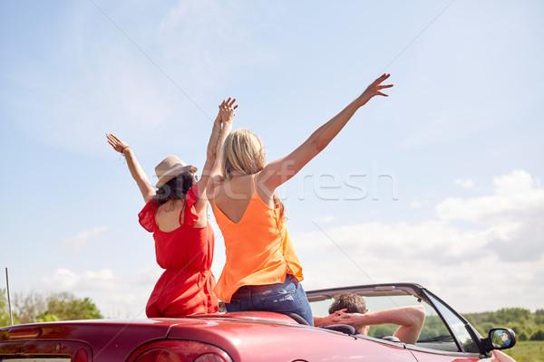 幸せ 友達 運転 二輪馬車 車 国 ストックフォト © dolgachov