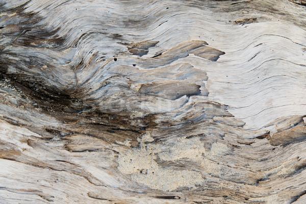 öreg viharvert fából készült felület hátterek textúra Stock fotó © dolgachov