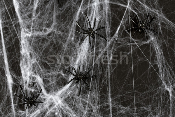 Stock photo: halloween decoration of black toy spiders on web