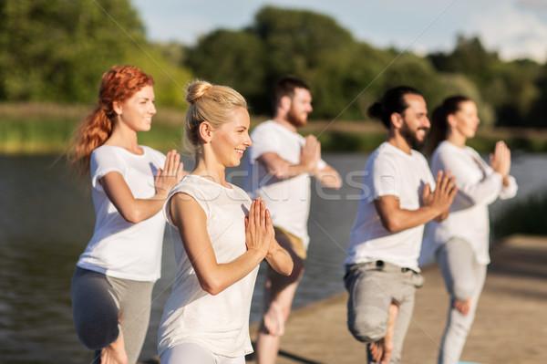Pessoas ioga árvore pose ao ar livre Foto stock © dolgachov