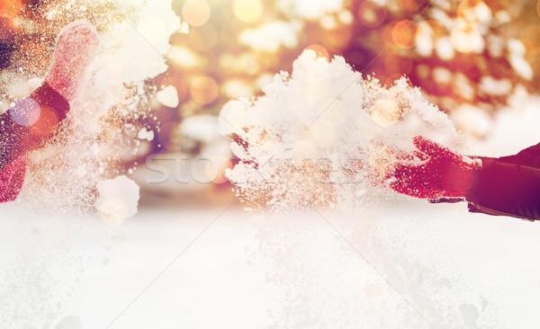 Mutlu arkadaşlar oynama kar kış insanlar Stok fotoğraf © dolgachov