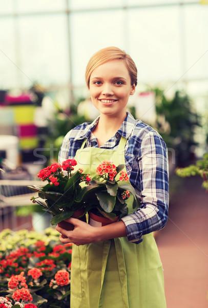 Felice donna fiori serra persone Foto d'archivio © dolgachov