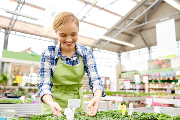 happy woman taking care of seedling in greenhouse Stock photo © dolgachov