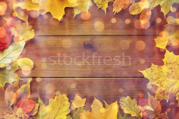 Stockfoto: Frame · veel · verschillend · natuur · seizoen