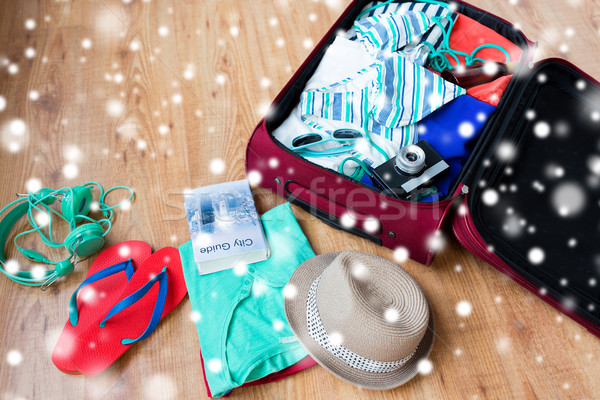 travel bag with clothes, camera and city guide Stock photo © dolgachov