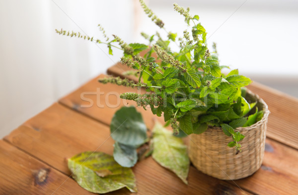 close up of melissa in basket on wooden table Stock photo © dolgachov