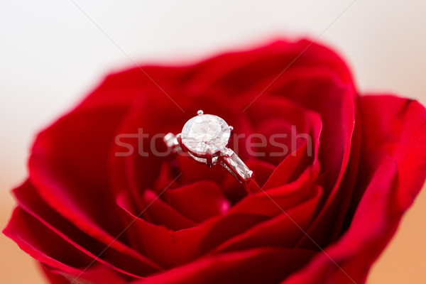 close up of diamond engagement ring in rose flower Stock photo © dolgachov