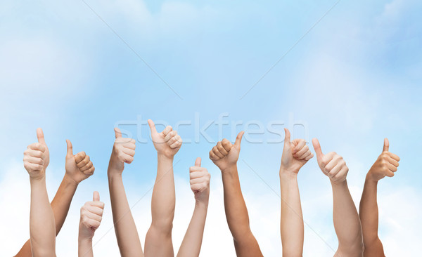 Stock photo: human hands showing thumbs up