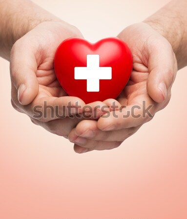 male hands holding red heart with donor sign Stock photo © dolgachov