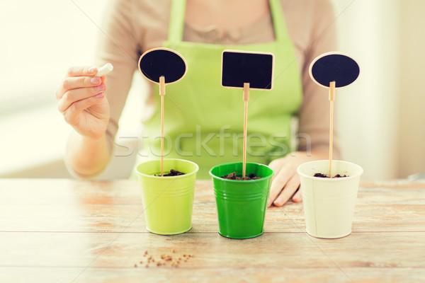Mulher solo sinais pessoas jardinagem Foto stock © dolgachov