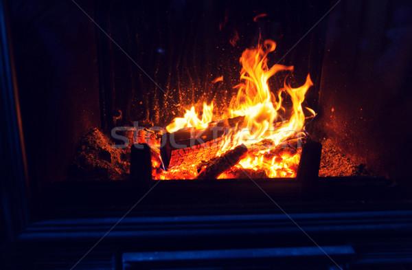 сжигание камин домой отопления тепло Сток-фото © dolgachov