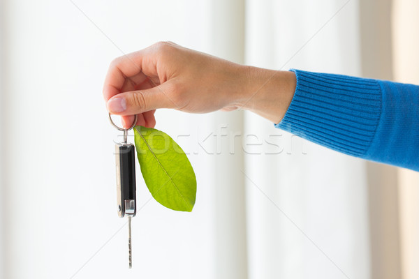 close up of hand holding car key with green leaf Stock photo © dolgachov