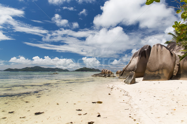 rocks on seychelles island beach in indian ocean Stock photo © dolgachov