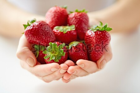 close up of woman hands holding strawberries Stock photo © dolgachov