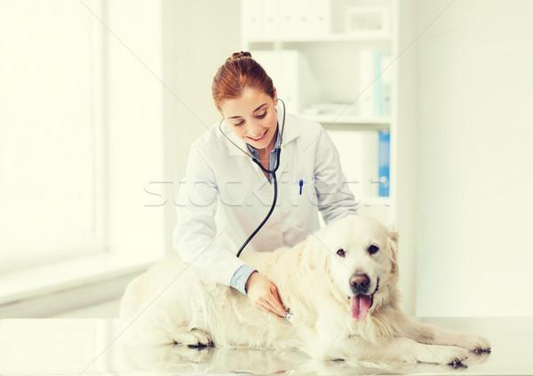 Foto stock: Feliz · mujer · perro · médico · veterinario · clínica