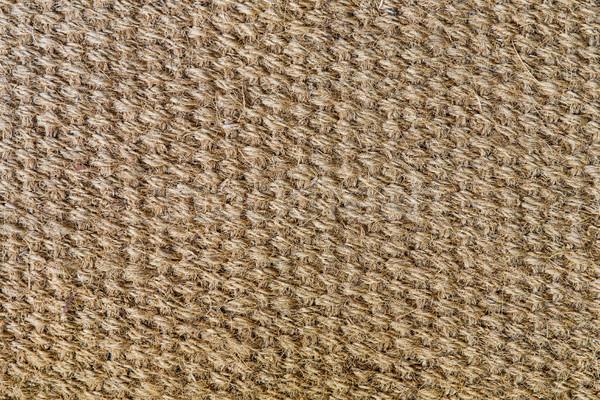 natural sisal matting surface Stock photo © dolgachov