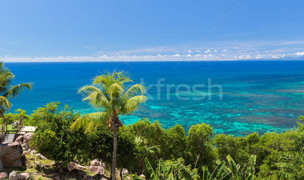 view to indian ocean from island with palm trees Stock photo © dolgachov