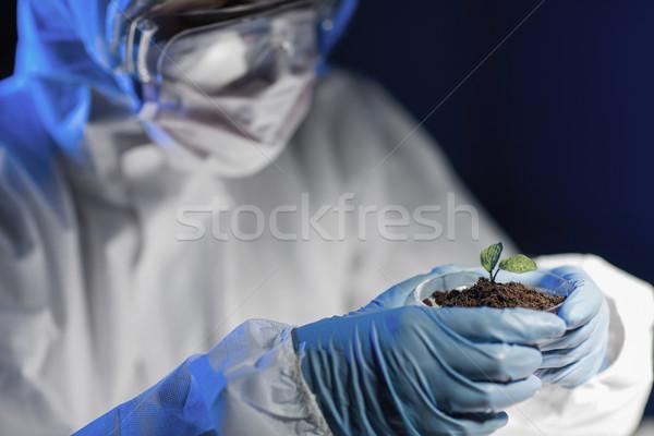 Cientista planta solo lab ciência Foto stock © dolgachov