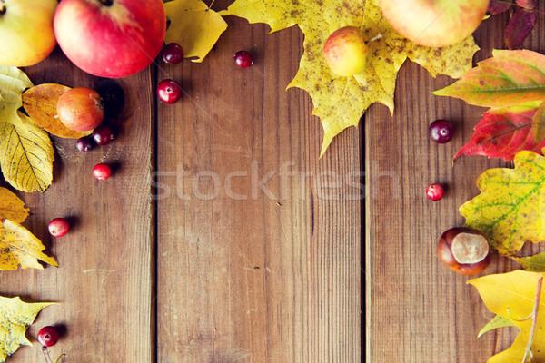 Stock fotó: Keret · őszi · levelek · gyümölcsök · bogyók · fa · természet