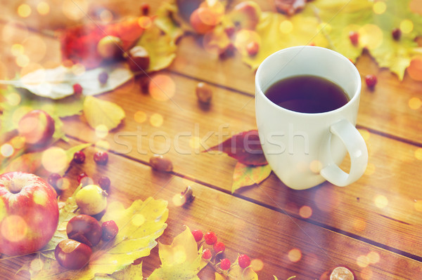 茶碗 表 紅葉 シーズン ドリンク ストックフォト © dolgachov