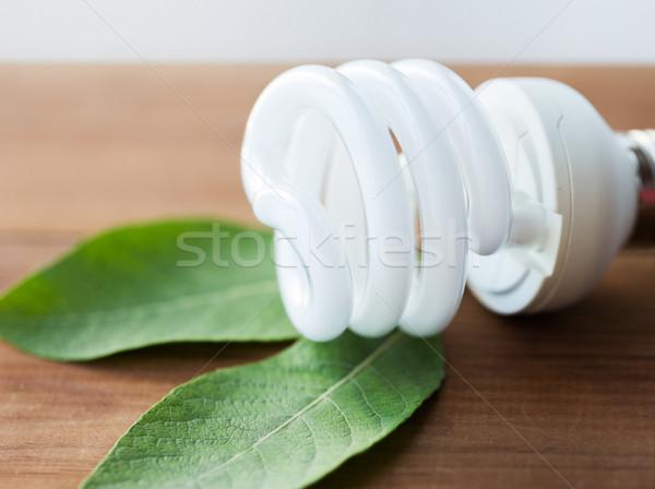close up of energy saving lightbulb and green leaf Stock photo © dolgachov