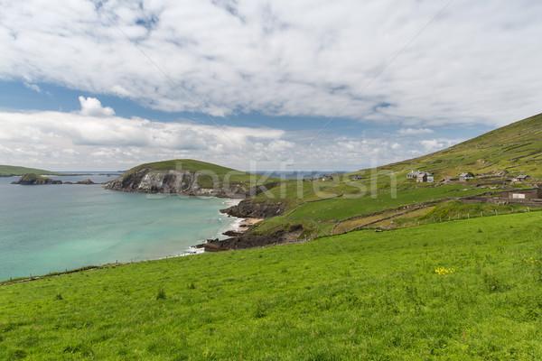 view to ocean at wild atlantic way in ireland Stock photo © dolgachov