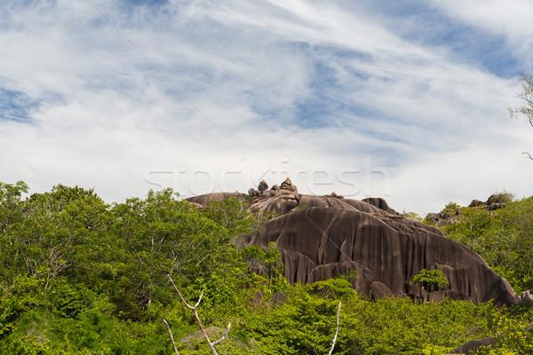 Stok fotoğraf: Taşlar · bitki · örtüsü · Seyşeller · ada · manzara · doğa