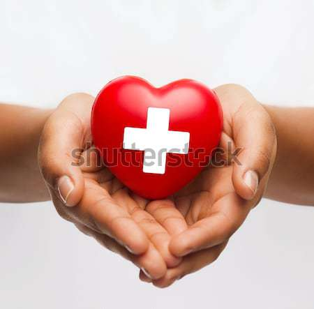 Stock photo: female hands holding red heart with donor sign