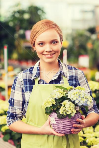 Szczęśliwy kobieta kwiaty szklarnia ludzi Zdjęcia stock © dolgachov