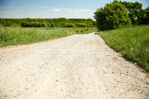 country road at summer Stock photo © dolgachov
