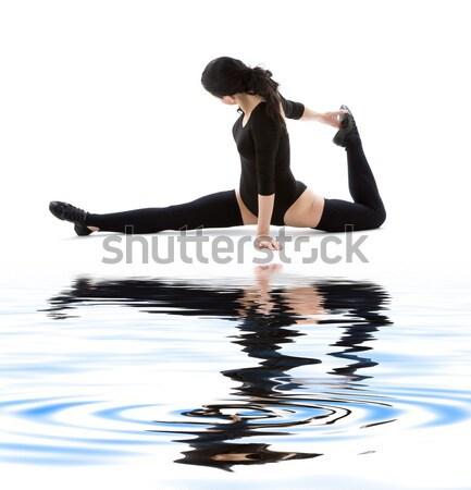 Cola de caballo nina azul agua blanco negro silueta Foto stock © dolgachov